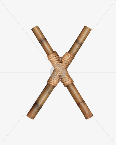 Bamboo X