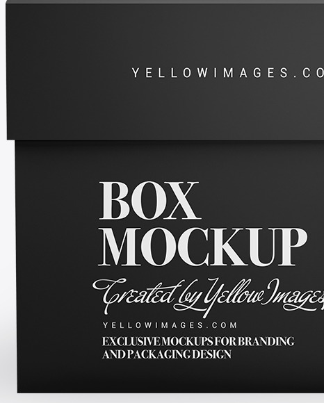 Paper Box with Label Mockup