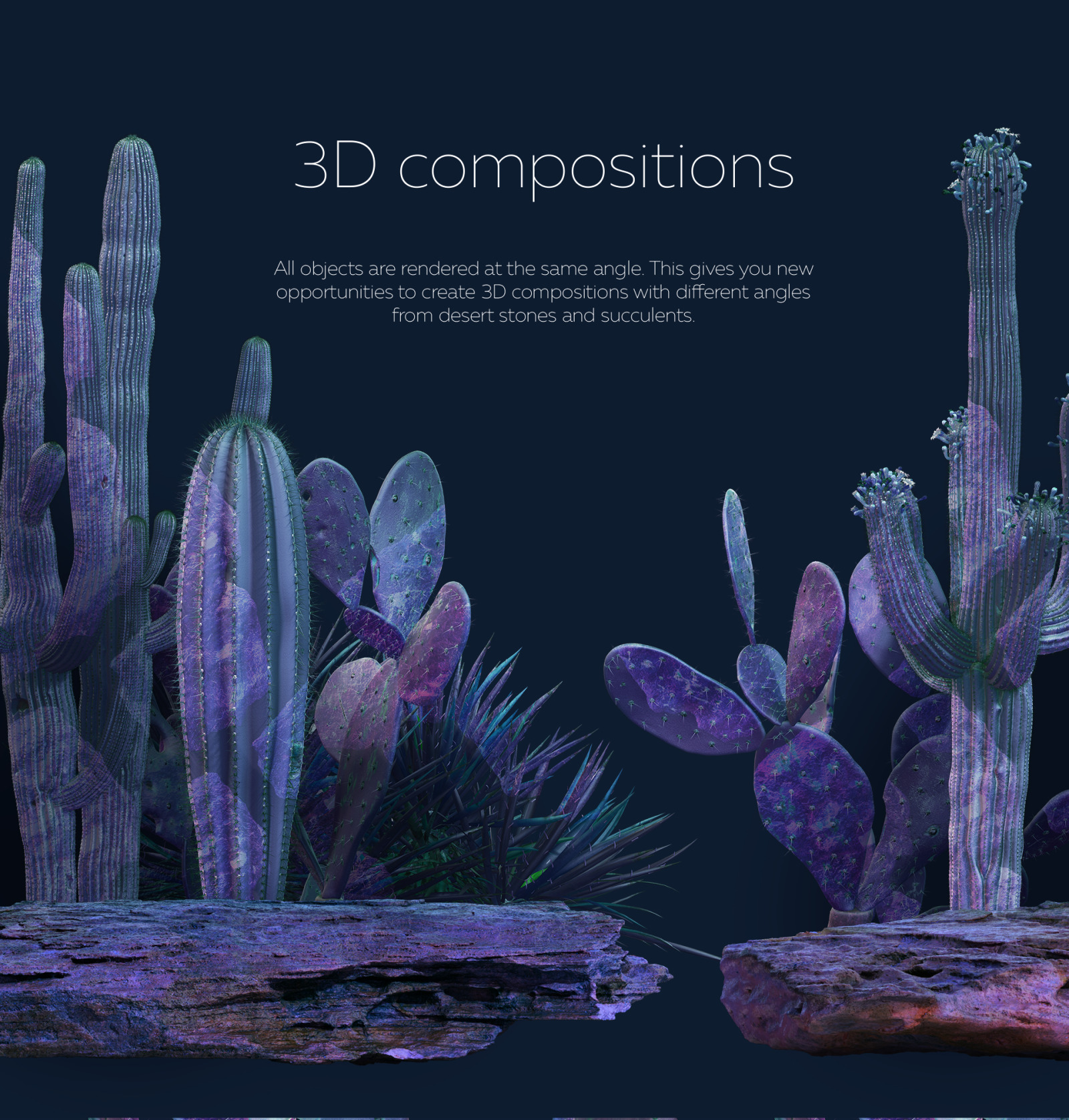 Cosmic cacti #01, 500 cactus and 120 rock mockups + 60 patterns