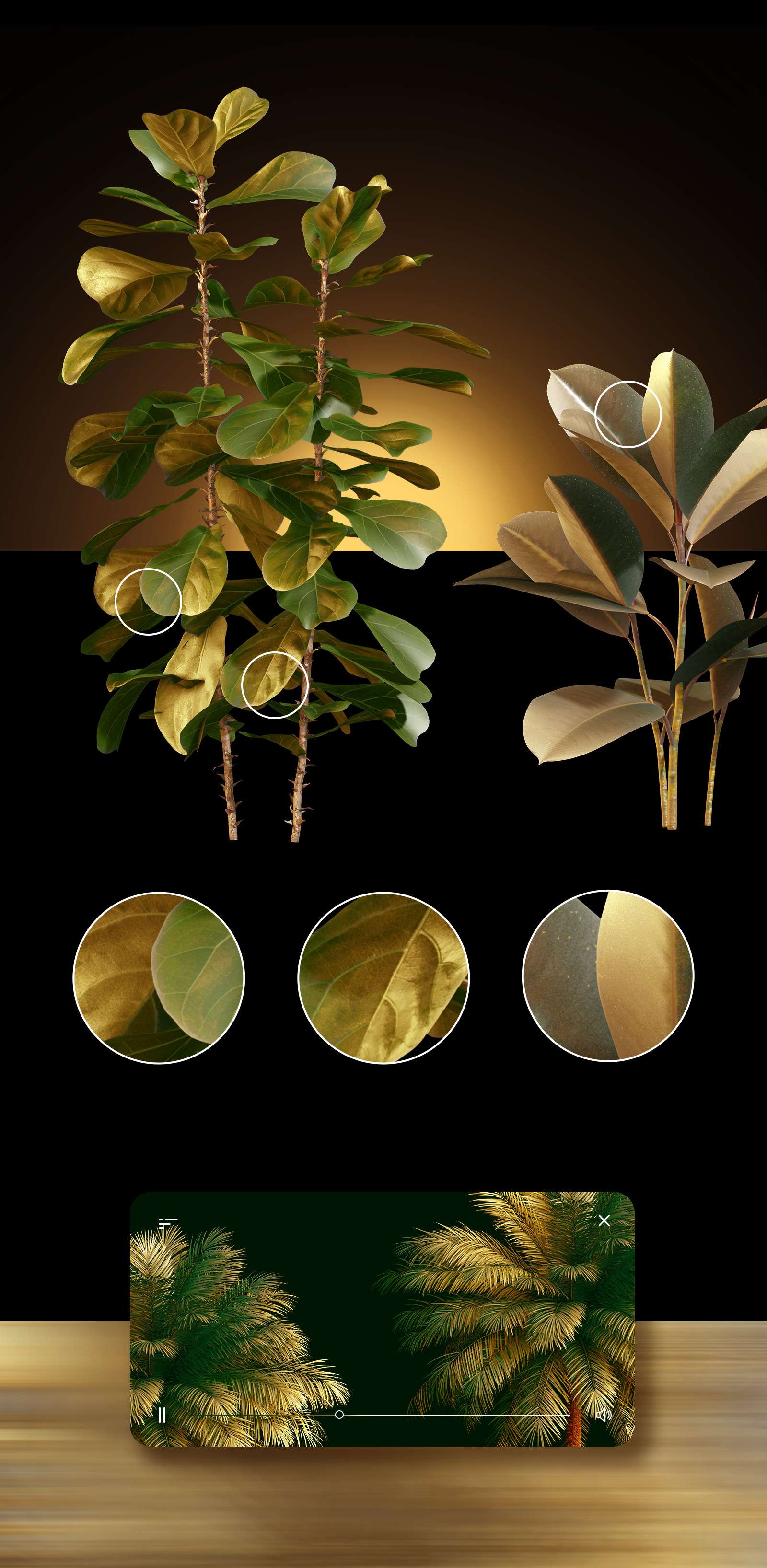 GOLD plants & stones collection #06