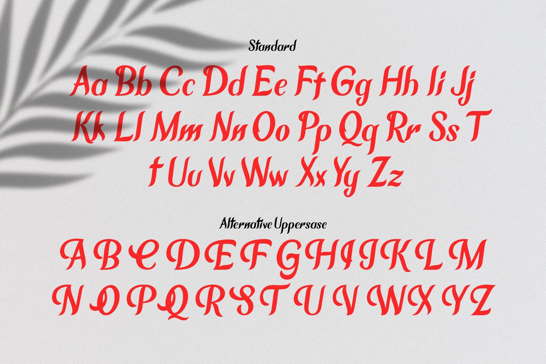 Chameron Modern Serif