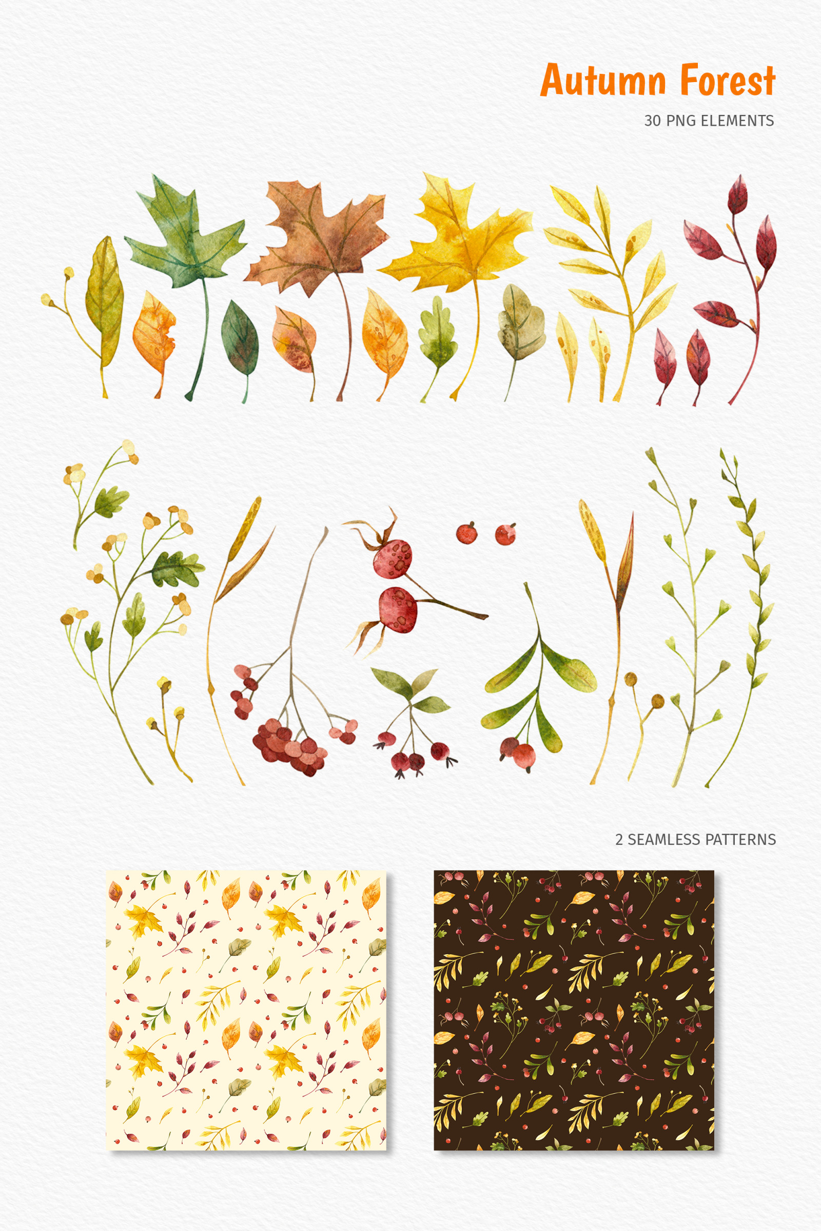 Watercolor woodland fall. Clipart, patterns, posters