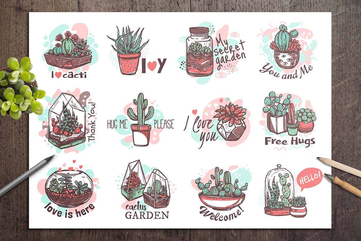Cacti and Succulents Cute Doodle