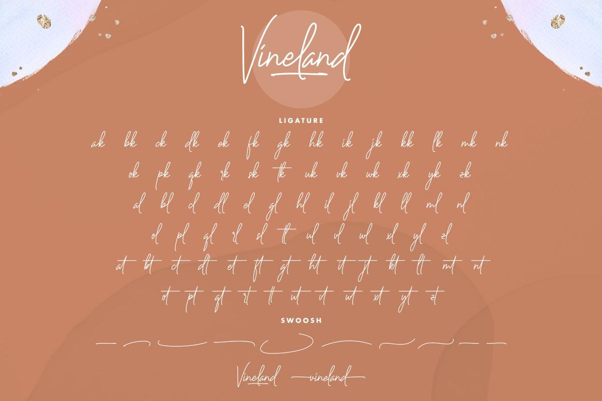 Vineland Script Font