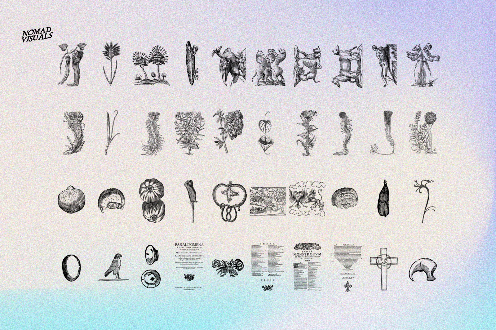 Prodigiorum Naturae - Illustrations