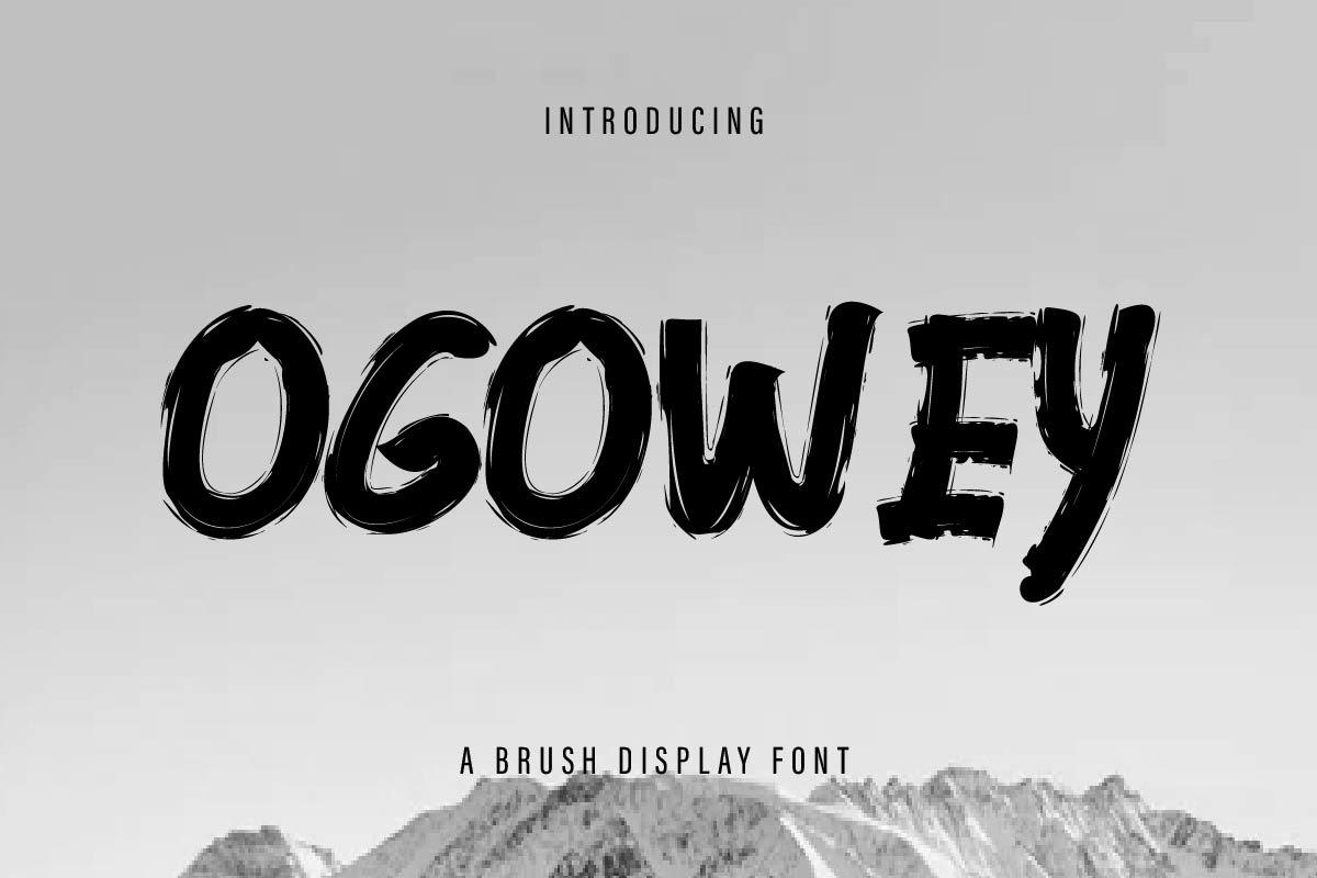Ogowey Rough Brush Display Font