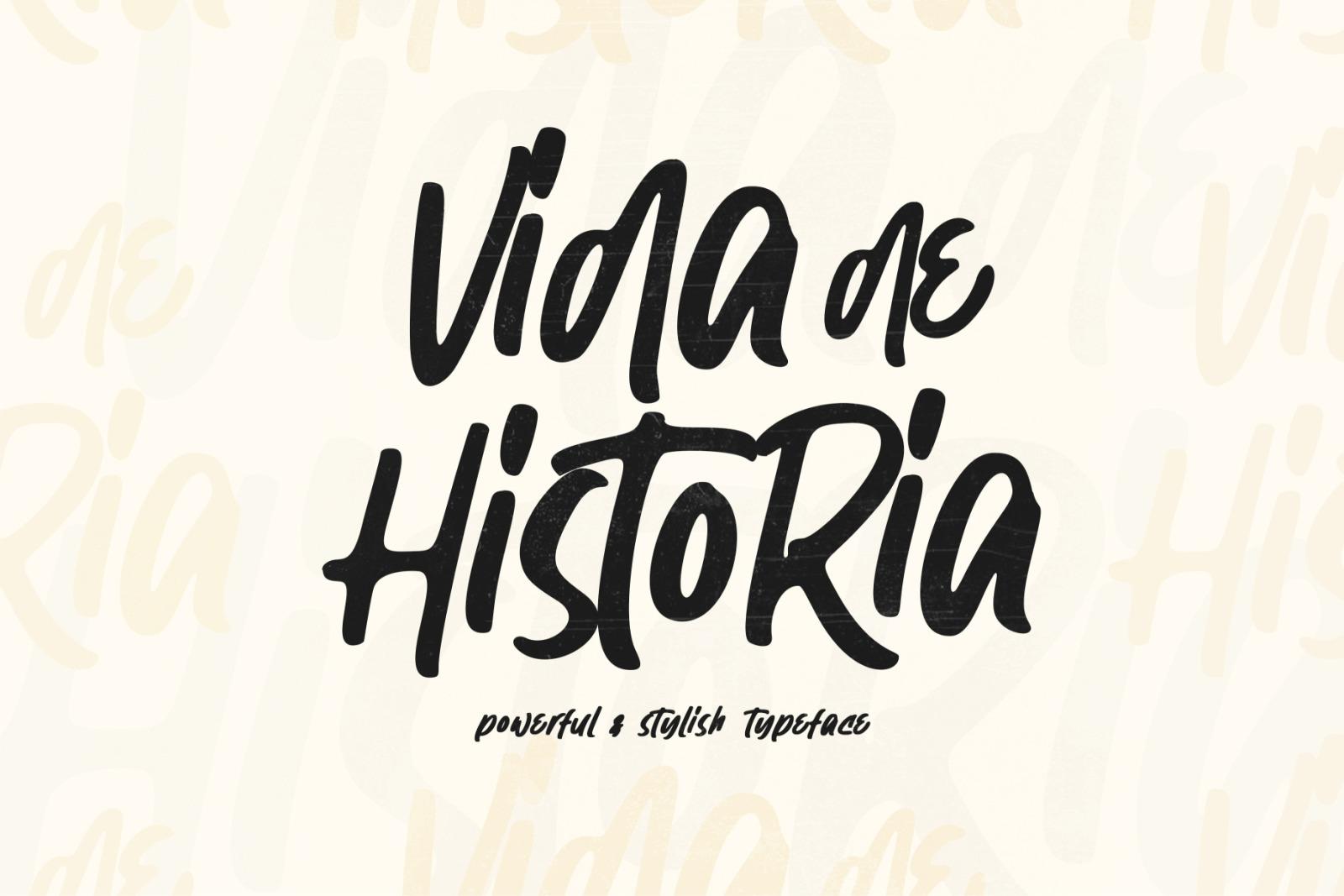 Vida de Historia - Stylish Typeface