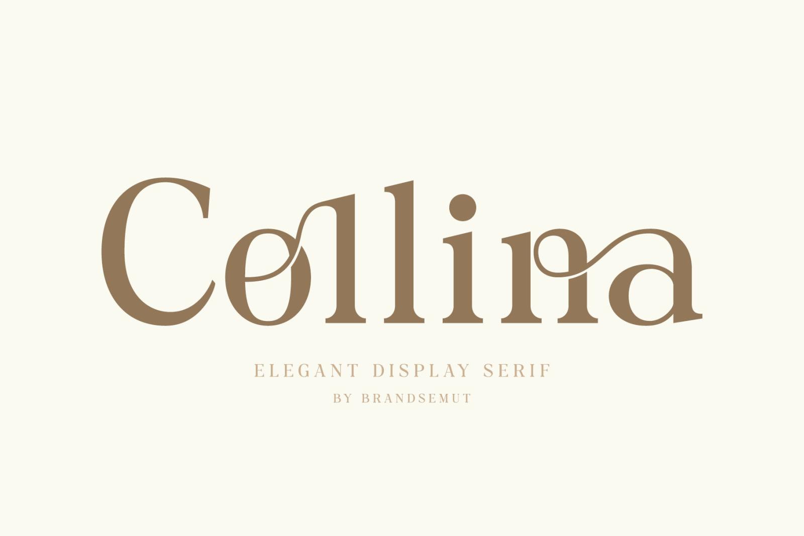 Collina // Ligature Serif Font