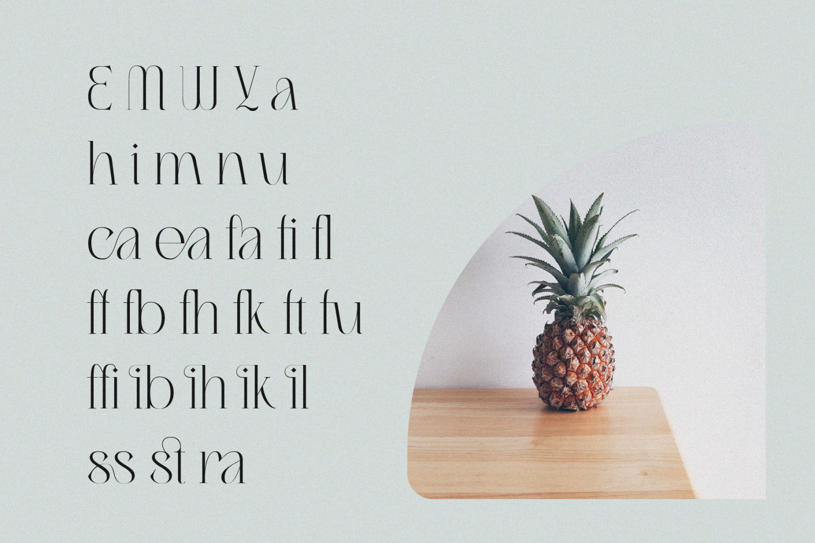 Migasike // Stylish Ligature Serif
