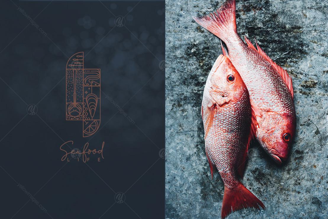 Modern Art Deco Seafood Art
