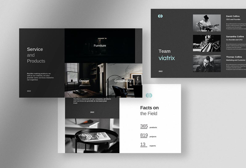 Viatrix - Professional Corporate Business Presentation