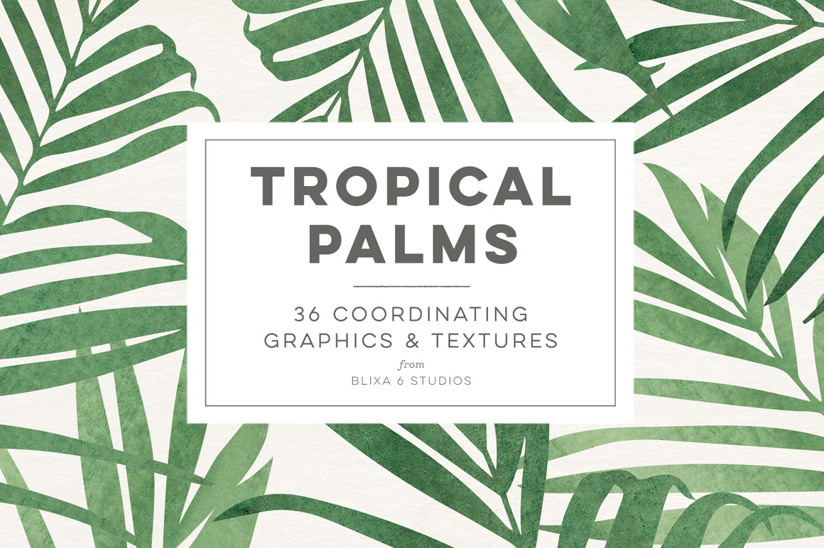 Tropical Palms - 36 Coordinating Graphics & Textures