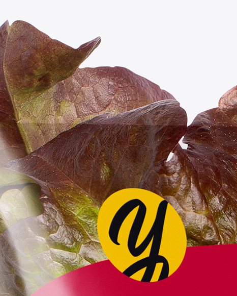 Plastic Bag With Red Oak Leaf Lettuce Mockup