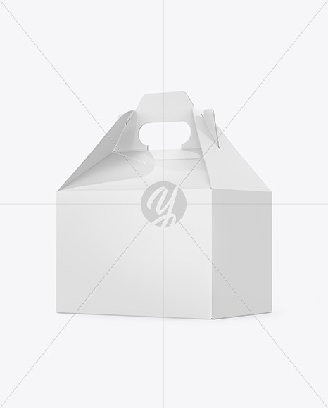 Glossy Paper Box with Handle