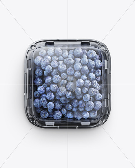 Container w/ Blueberry Mockup