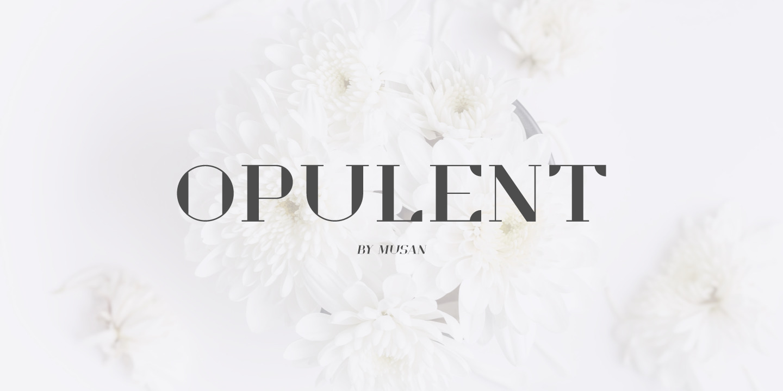 Opulent - Classy Modern Serif Font Display