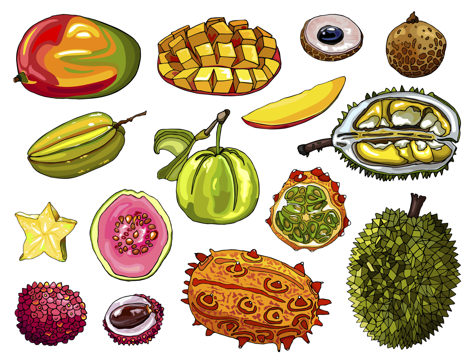 Collection of exotic fruits vector