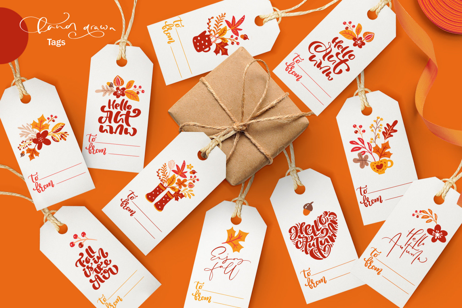 Autumn vector calligraphy & floral elements