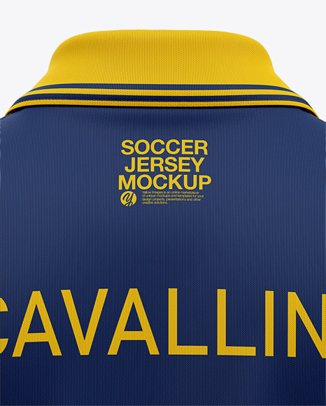 Men's Soccer Jersey / Cricket Jersey Mockup - Back View of Polo Shirt