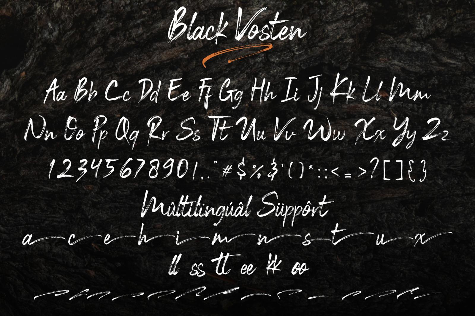 BLack Vosten // Brush Font