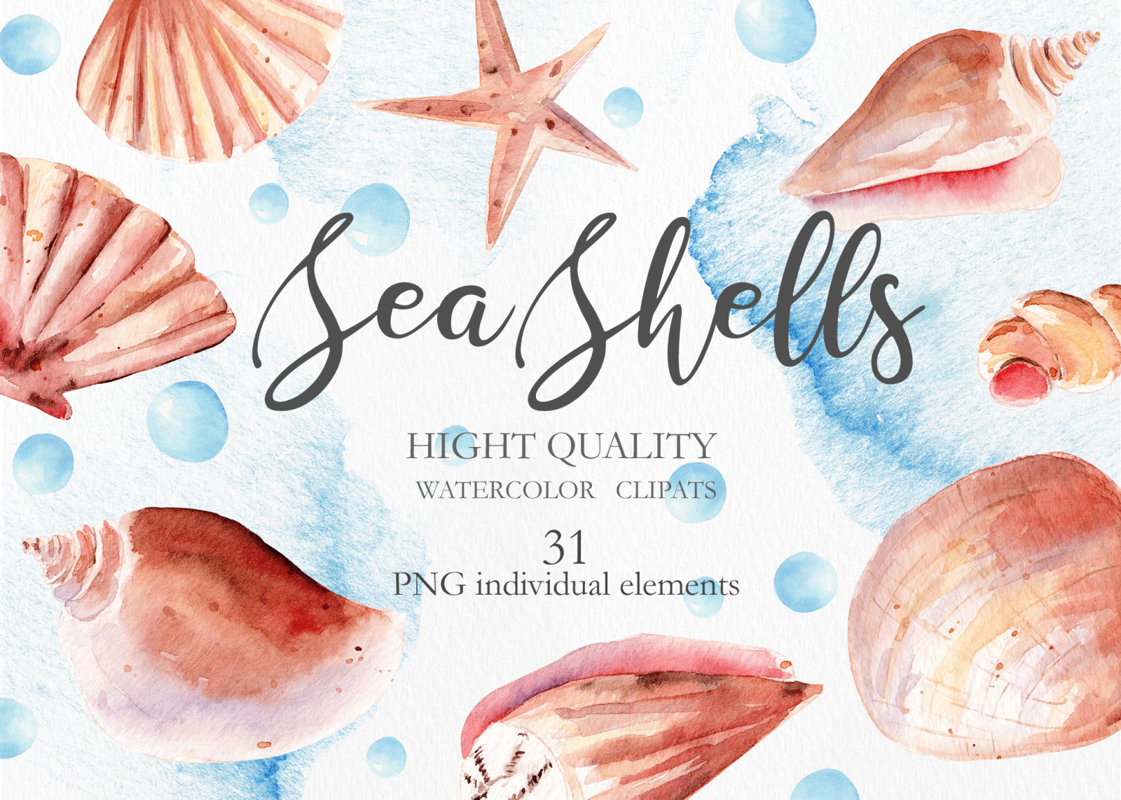 Seashells Clipart Collection