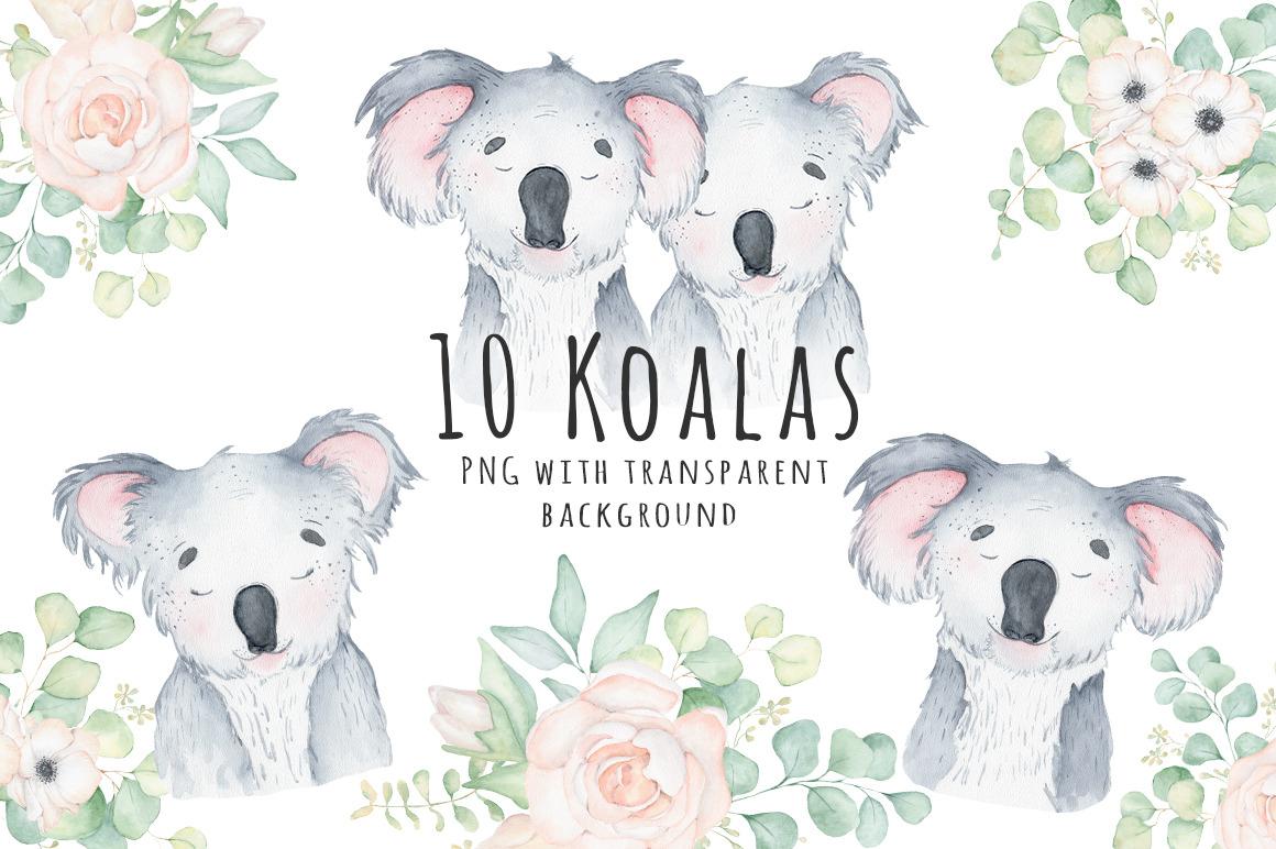 Lovely Koalas and Eucalyptus