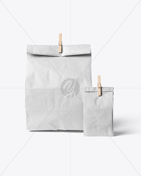Two Paper Bags