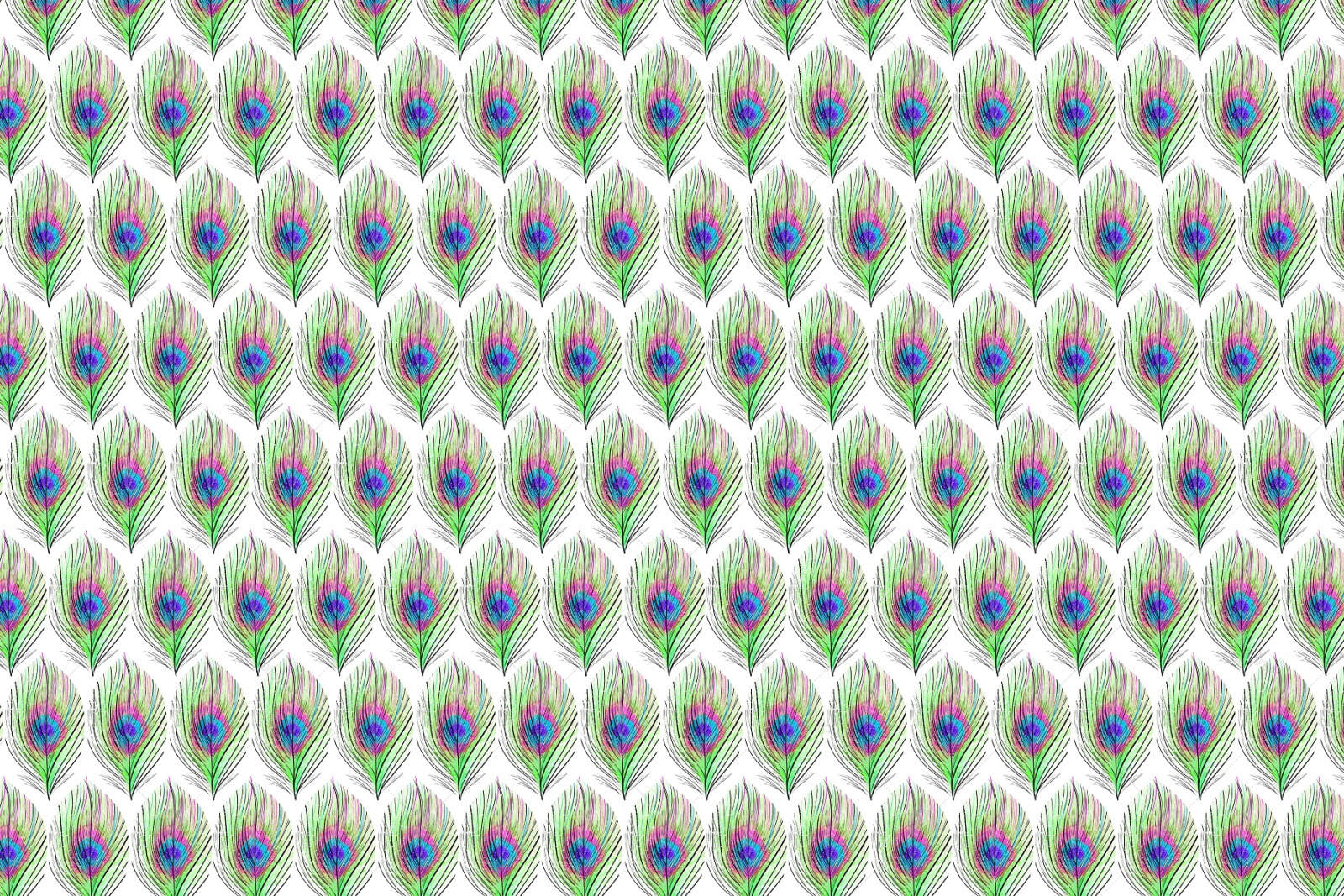Feathers Pattern Collection