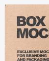 Kraft Box With Glossy Can Mockup