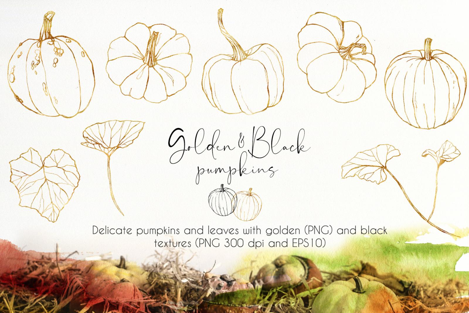 Pumpkins. Watercolor bundle
