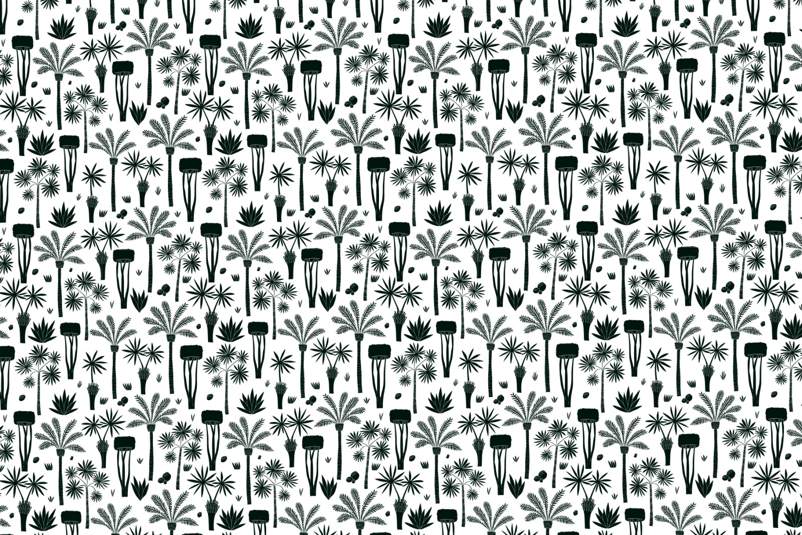 African Plants Vector Collection
