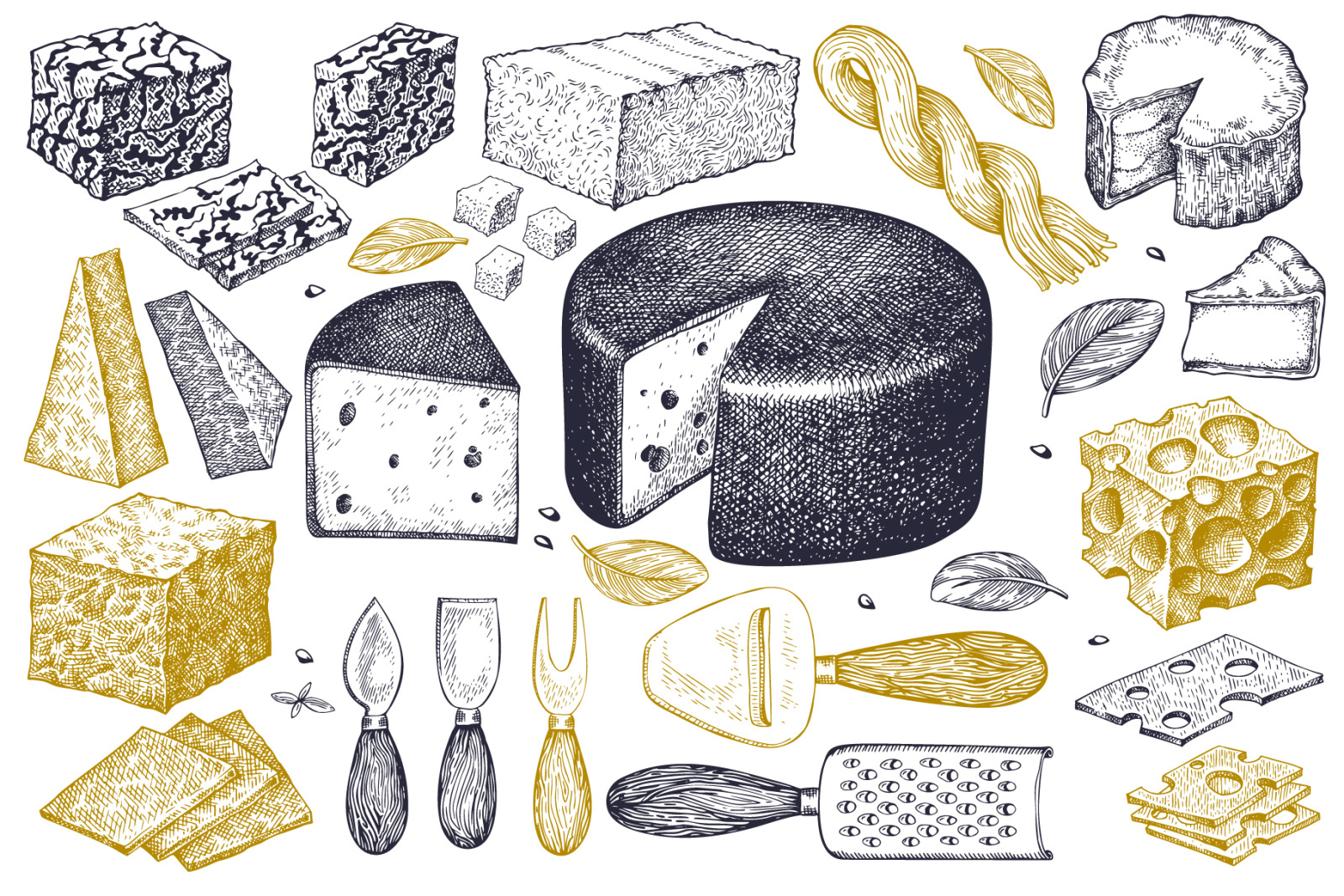 Cheeses Vector Collection