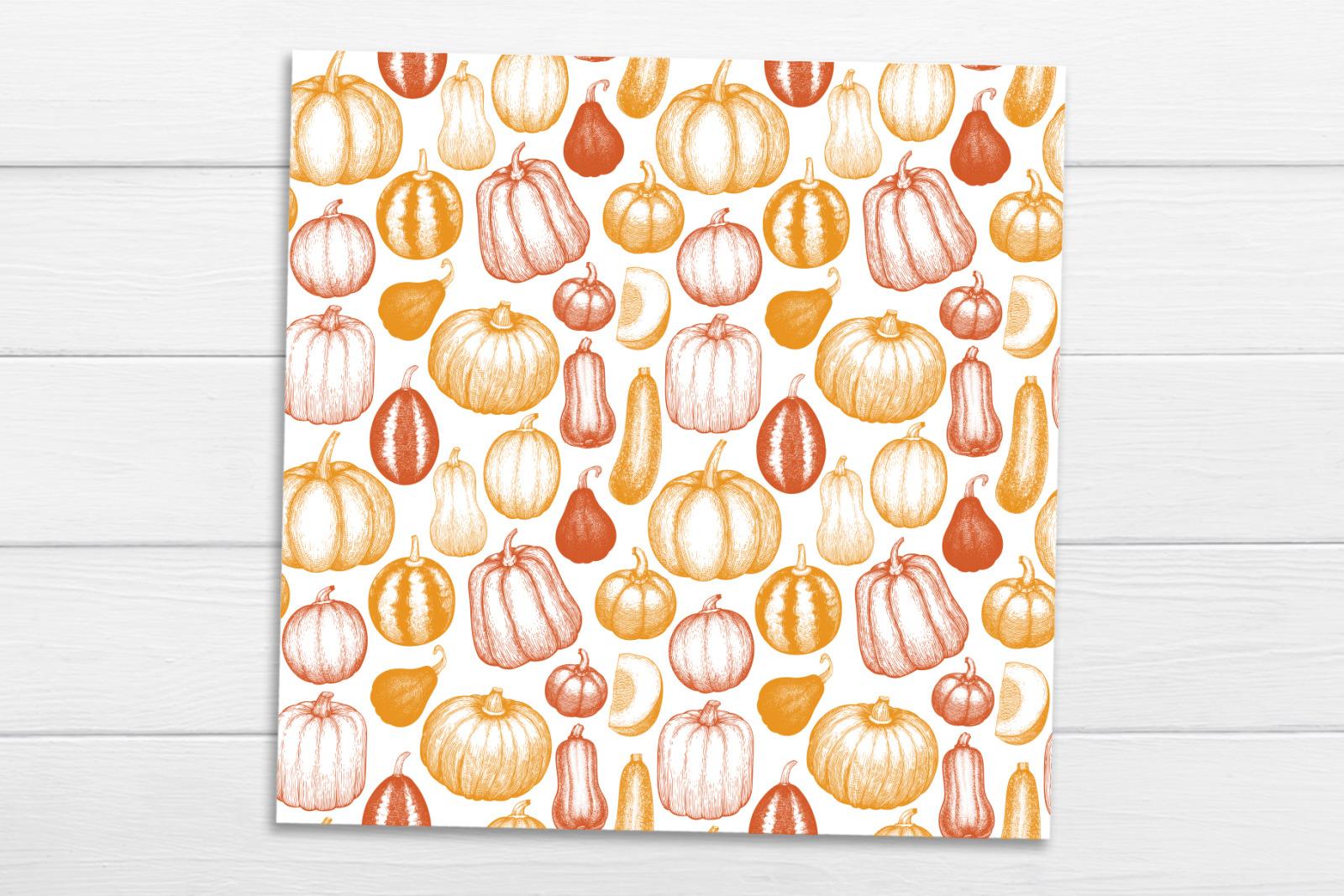 Pumpkin Vector Collection