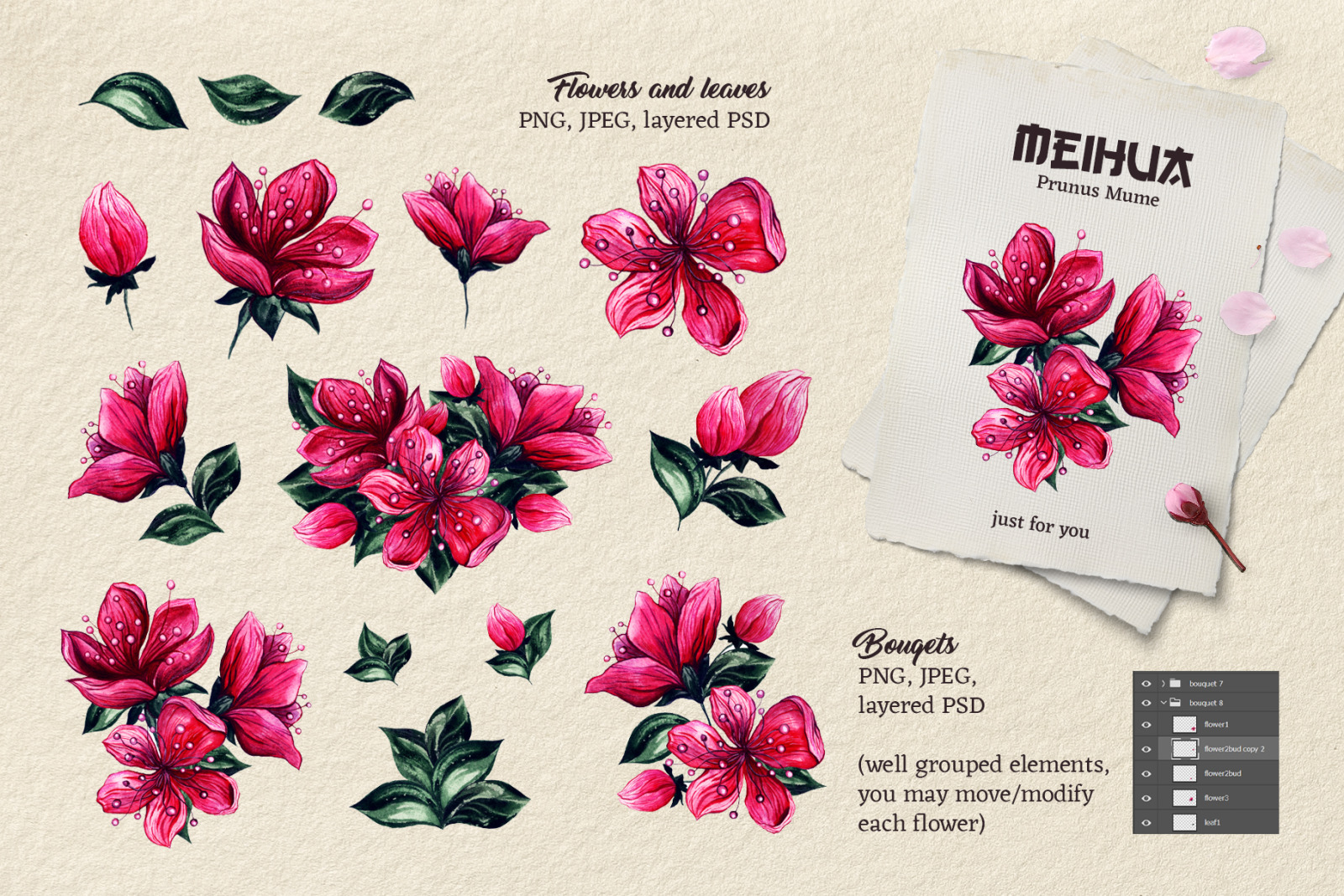 Plum Blossom Chinese Watercolor Flowers Clip Art and Seamless Patterns