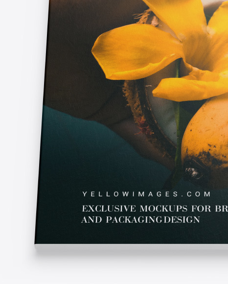 Download Textured Magazine Mockup In Stationery Mockups On Yellow Images Object Mockups PSD Mockup Templates