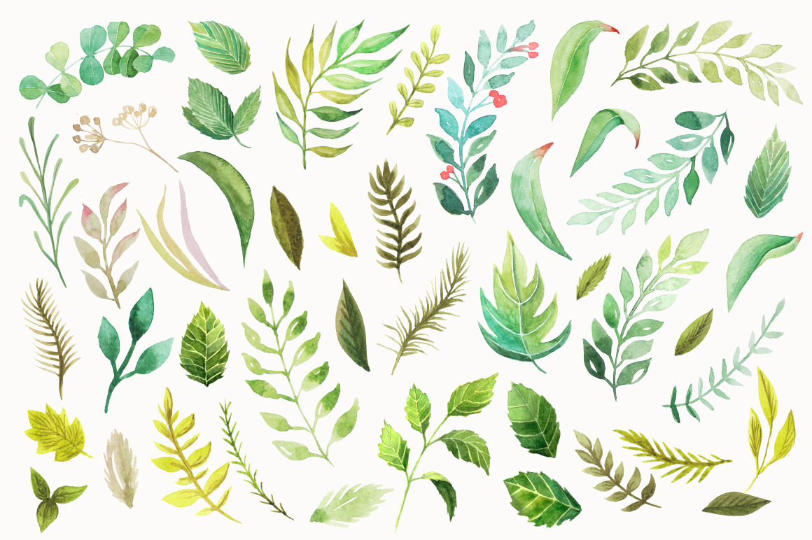 Watercolor Green Elements Pack