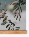 Wooden Picture Frame Mockup