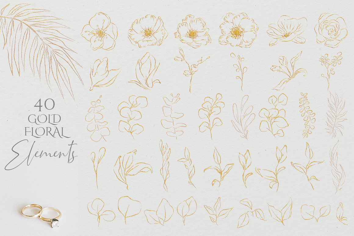 Floral Sketch Illustrations Collection