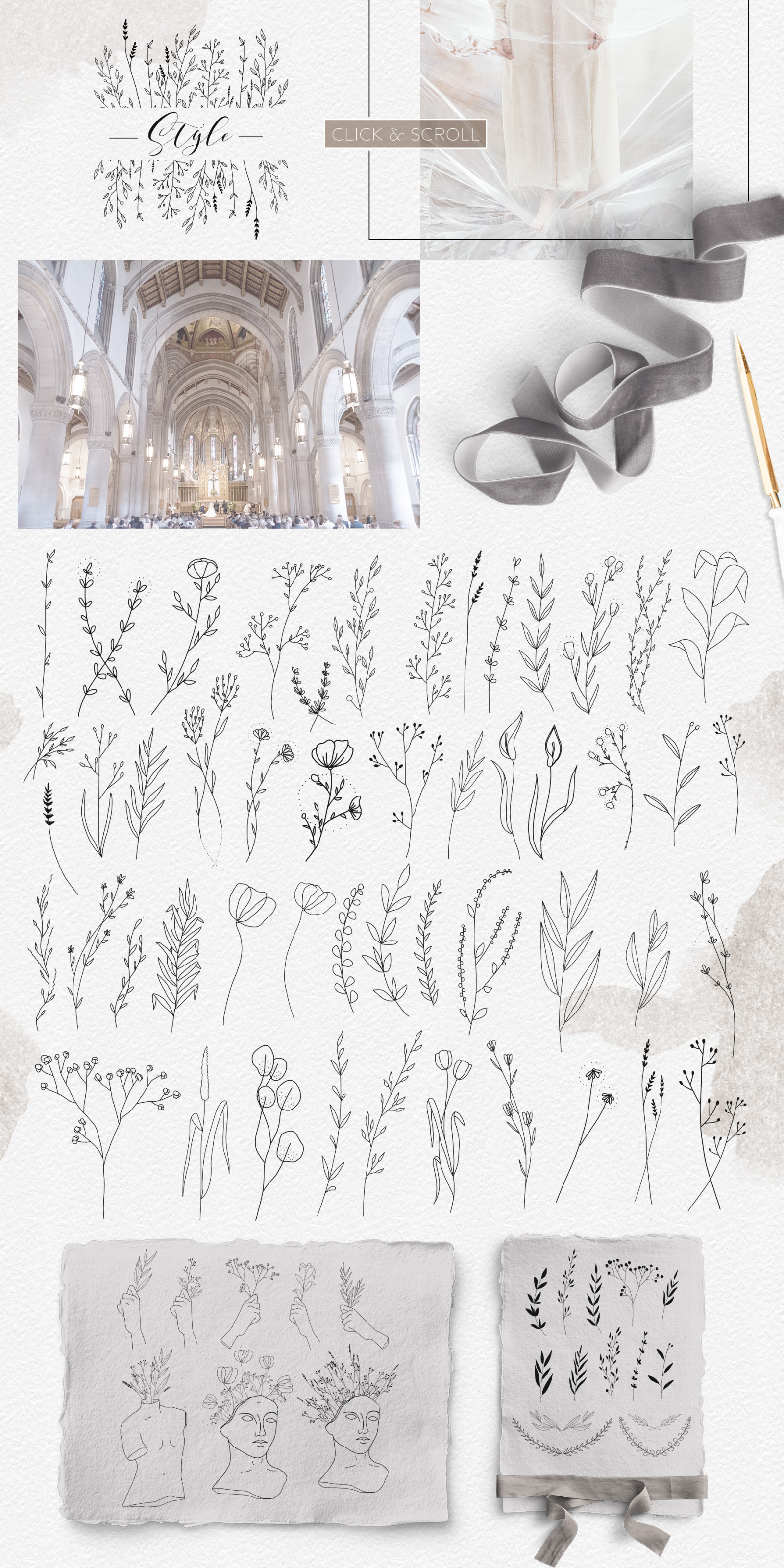 Line art botanical illustrations