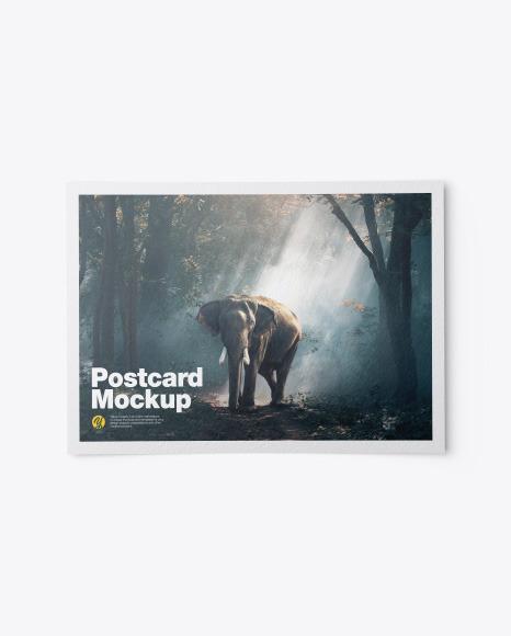Textured A5 Postcard Mockup