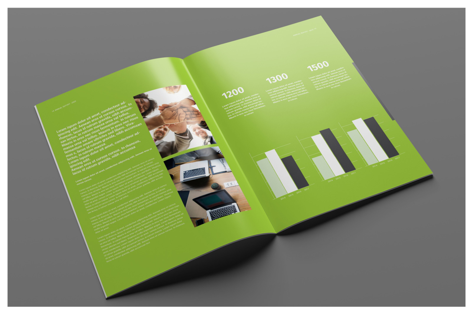 Business Annual Report