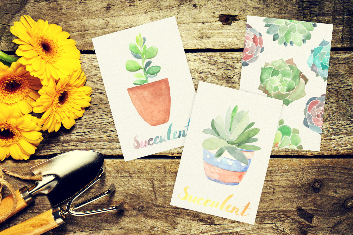 Watercolor Succulents Collection