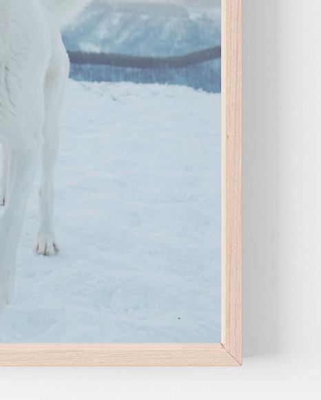 Wooden A4 Frame Mockup