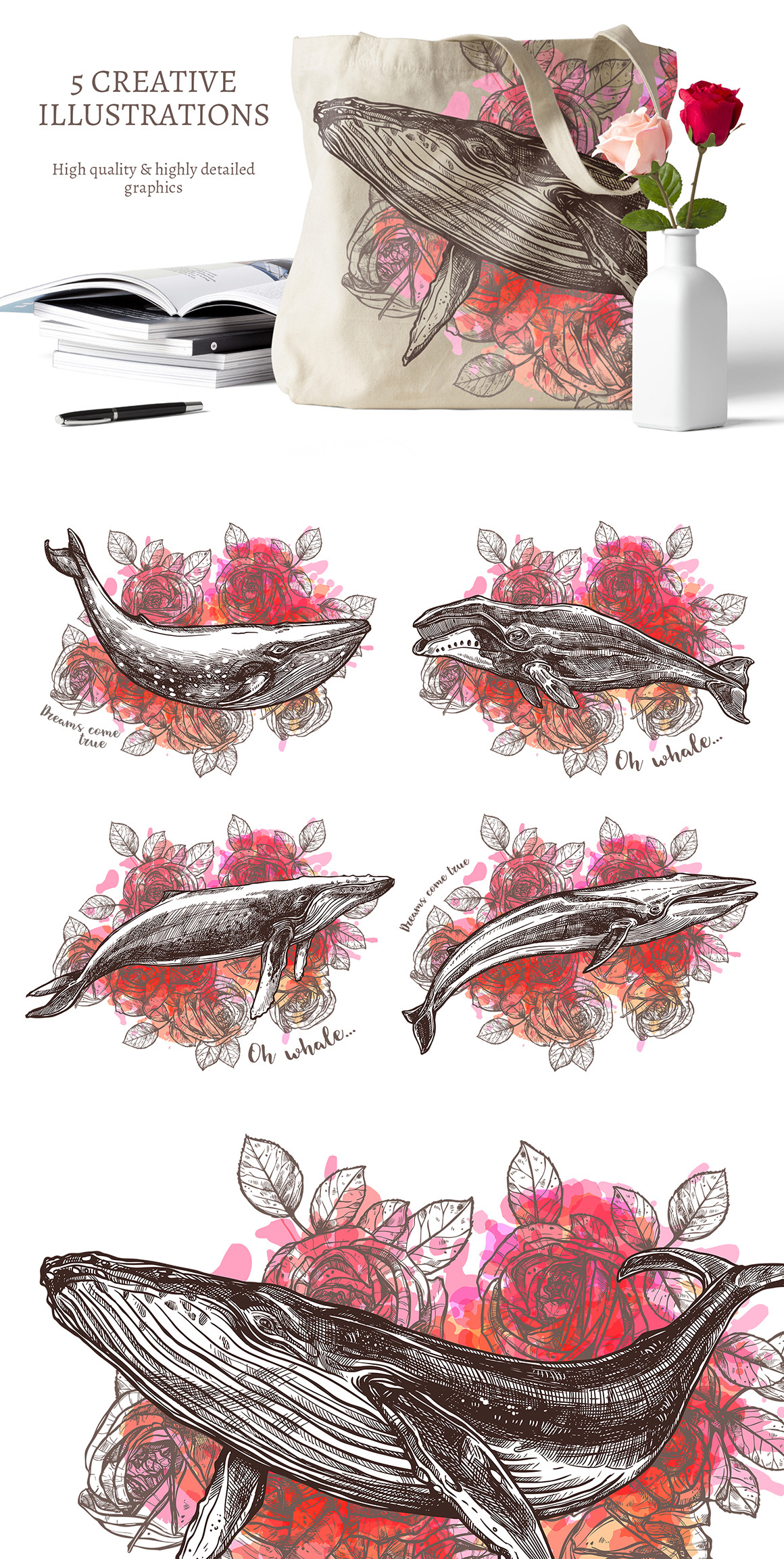 Whales Sketch Illustrations
