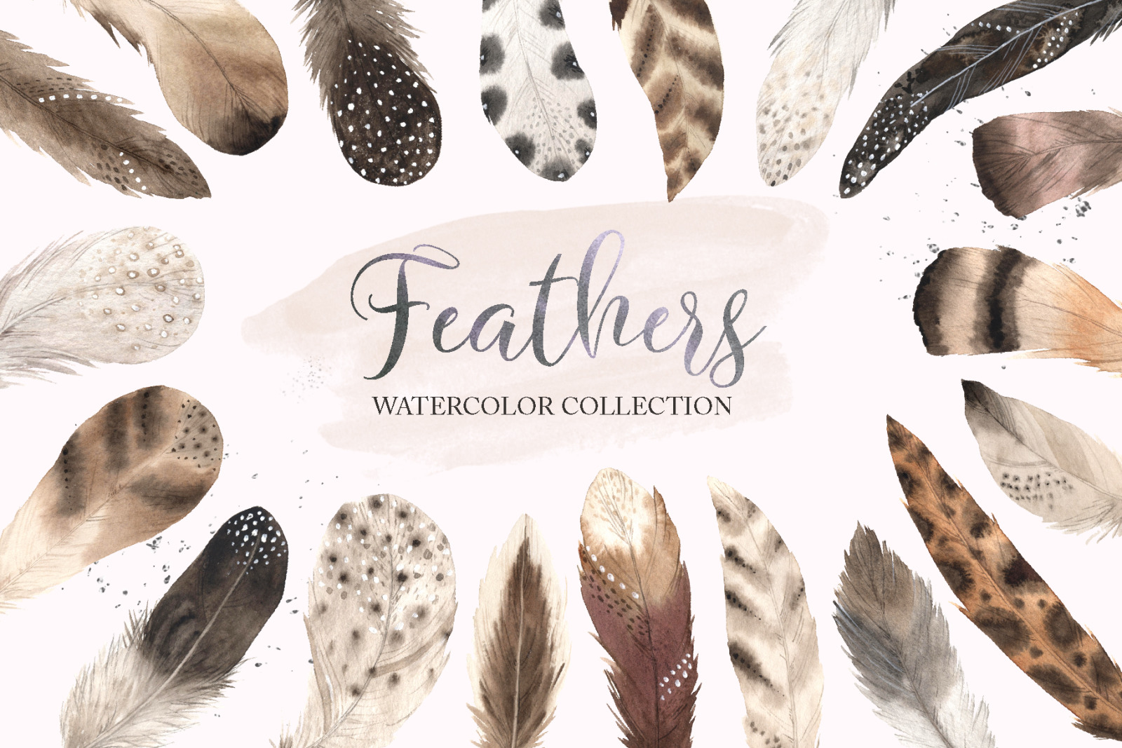 Watercolor Delicate Feathers Set