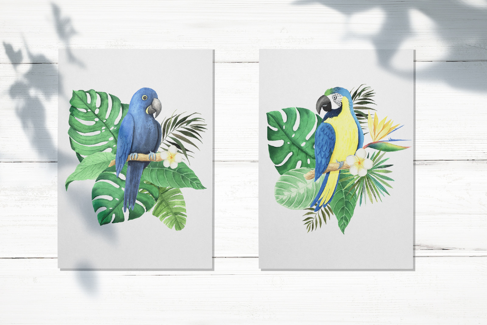 Watercolor Tropical Birds Set
