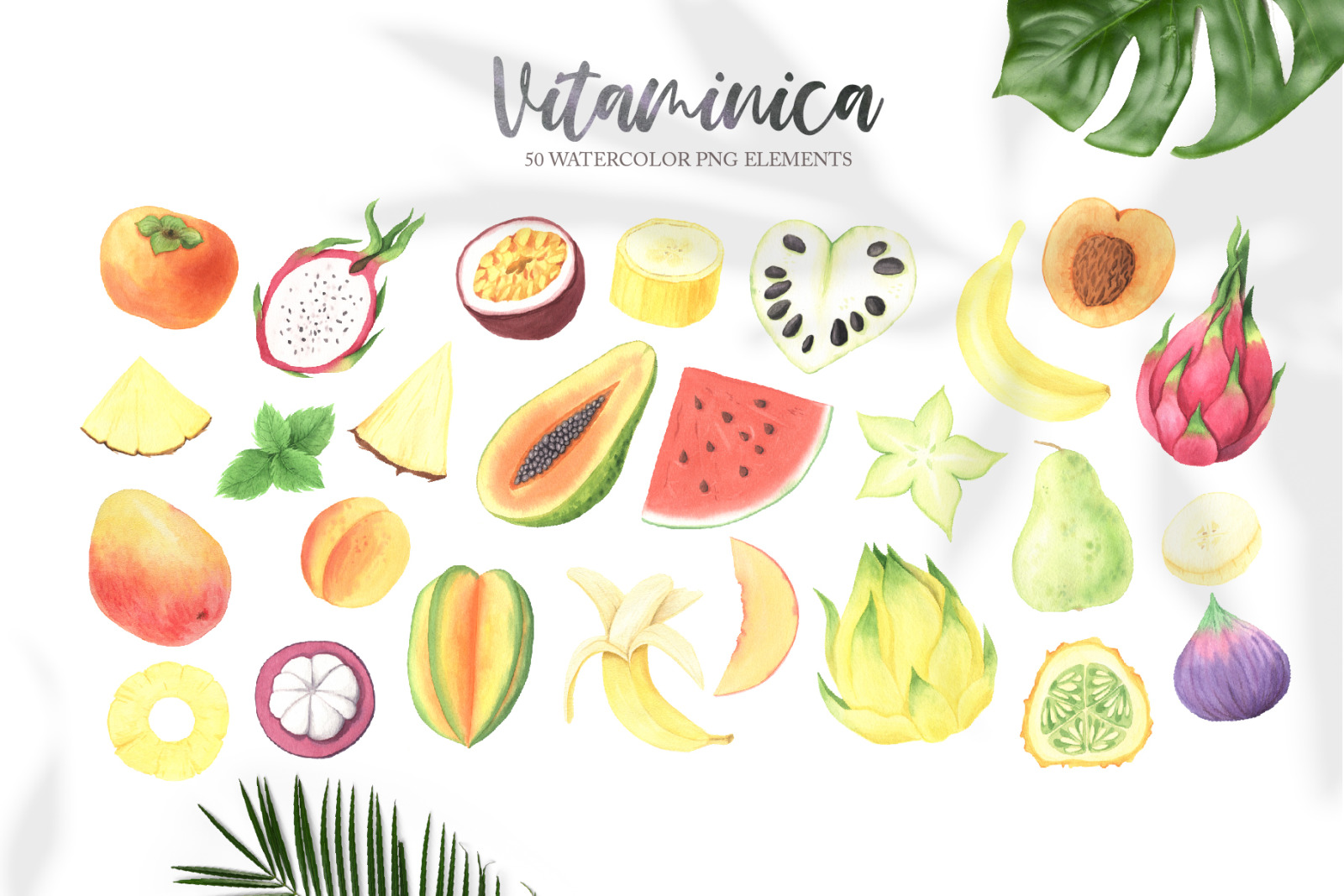 Watercolor Vitaminica Fruit Set