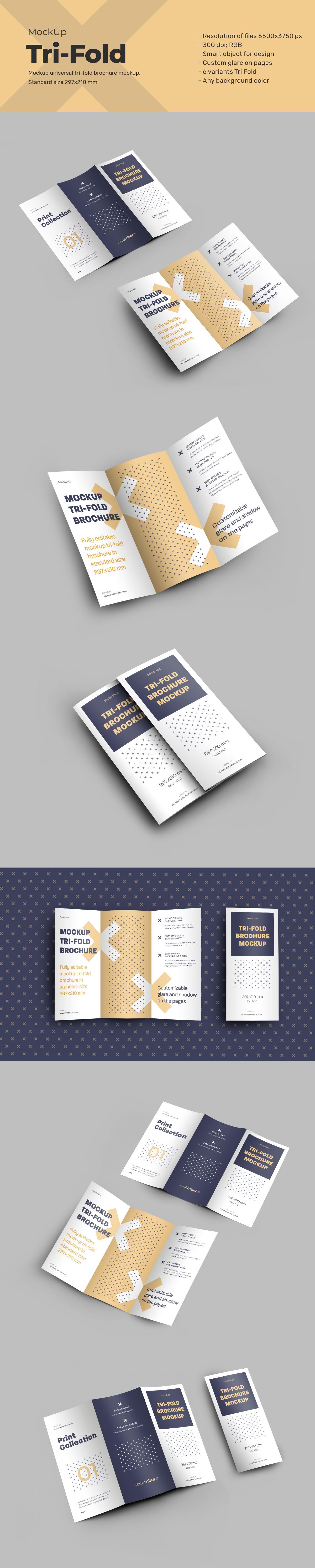6 Mockups Leafleat DL Trifold Brochure