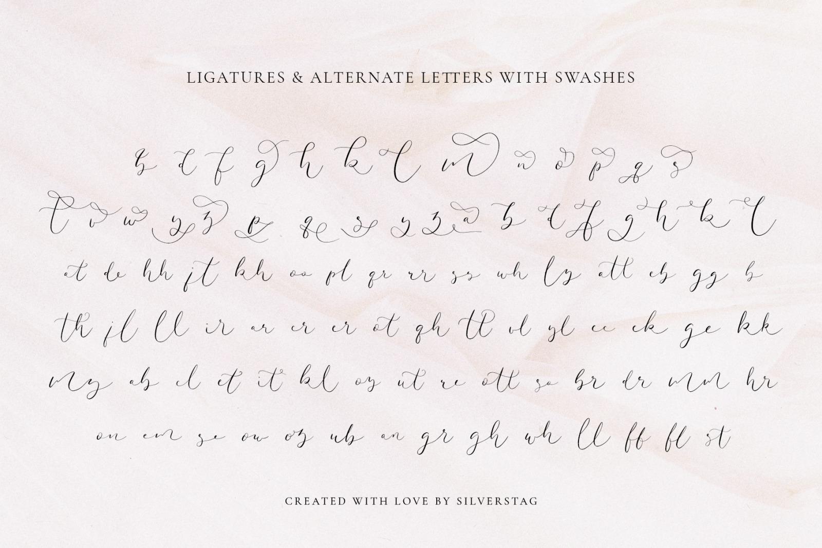Amelie - Chic & Elegant Script Font