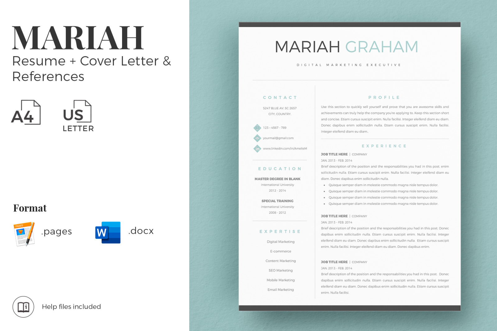 Professional Modern Resume Cv Template Marketing Resume